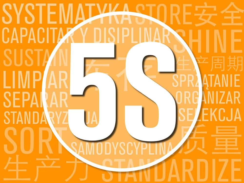5S translated into Chinese, Spanish, Polish; combined into logo for March 2018 blog, featuring Lean content from Dina Manoway